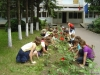 Avem grijă de grădina şcolii