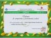 Diplomă de competenţă şi performanţă şcolară