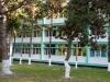 Grădina şcolii